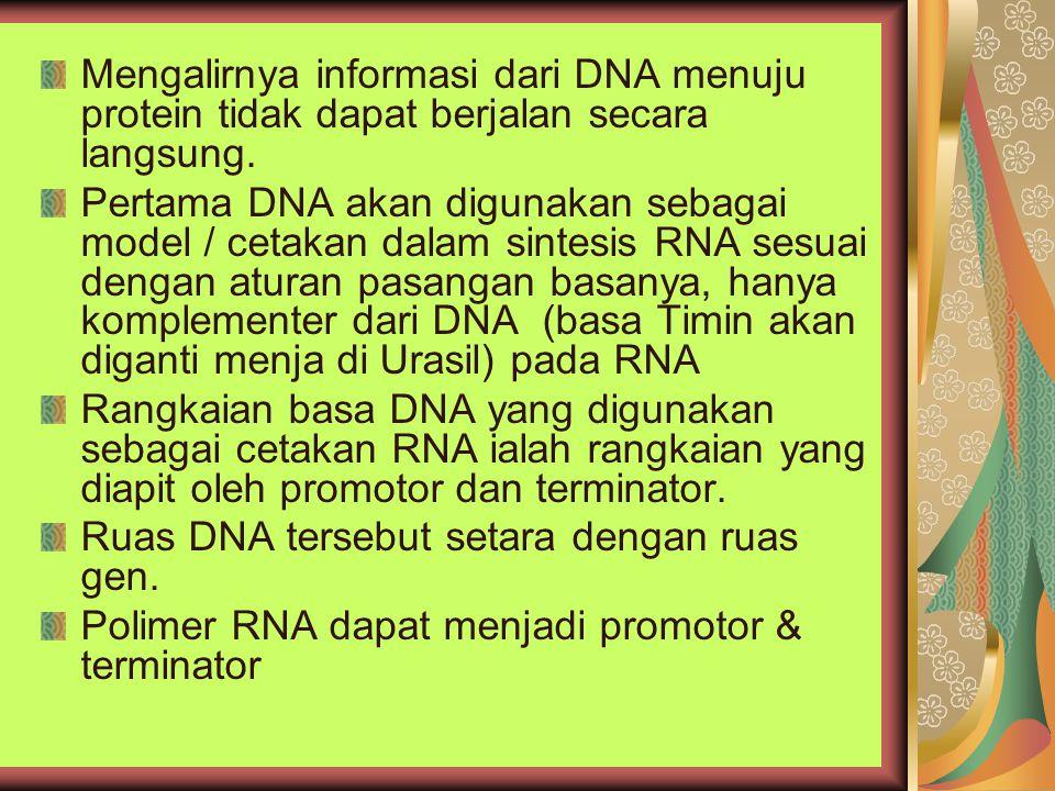 Mengalirnya informasi dari DNA menuju protein tidak dapat berjalan secara langsung.