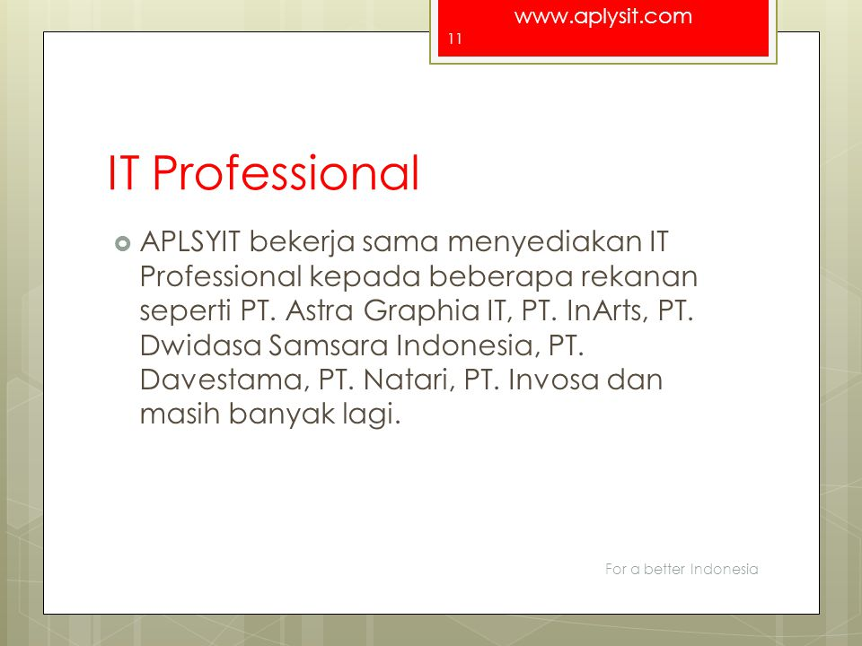 IT Professional