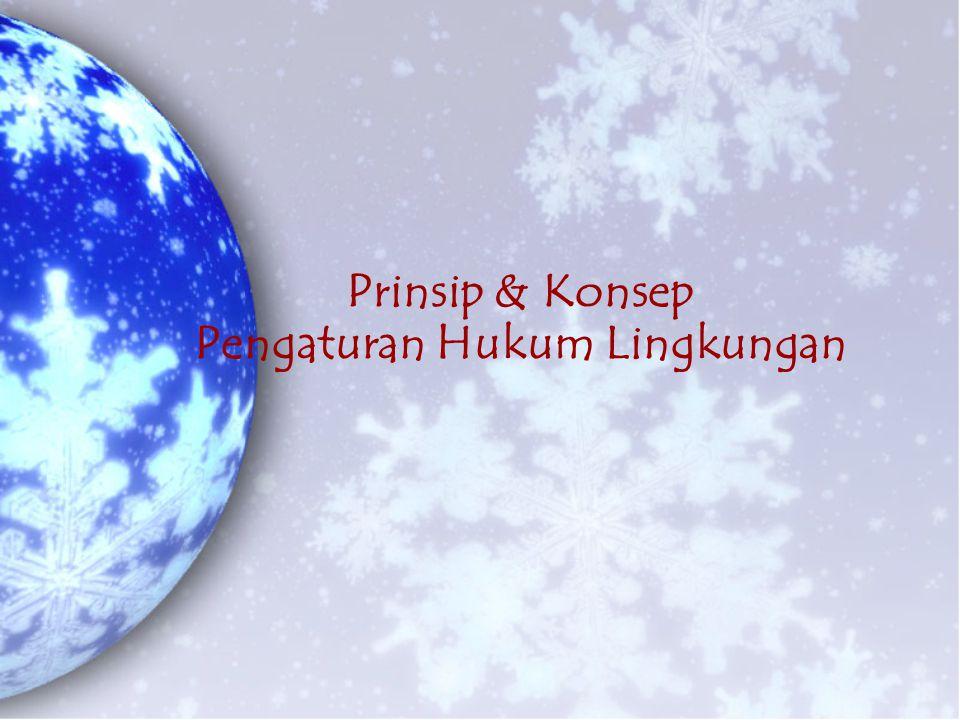 Prinsip & Konsep Pengaturan Hukum Lingkungan