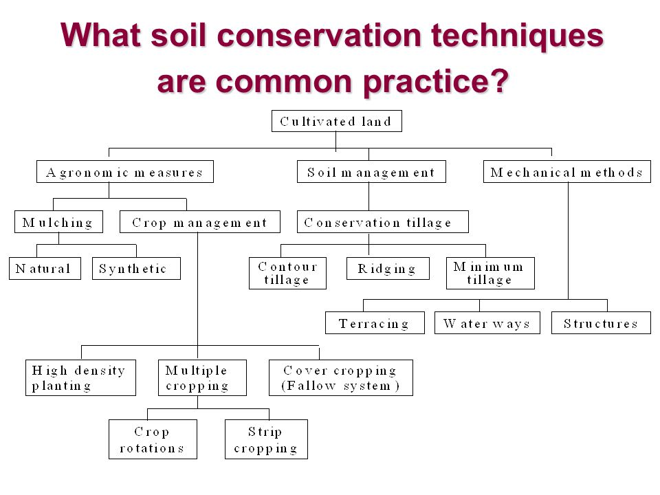 What soil conservation techniques are common practice