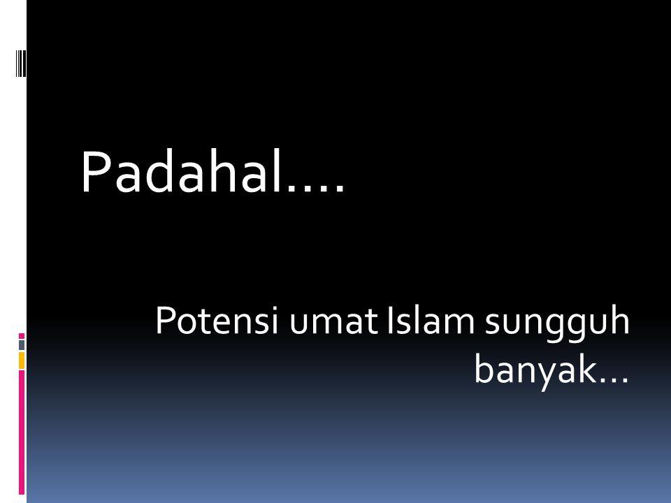 Padahal.... Potensi umat Islam sungguh banyak...