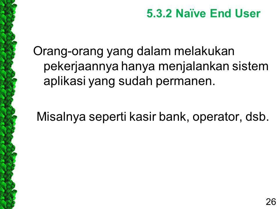 5.3.2 Naïve End User