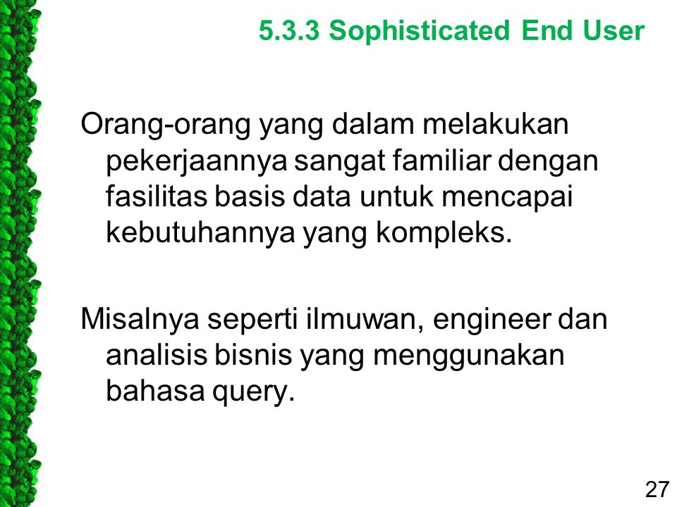 5.3.3 Sophisticated End User