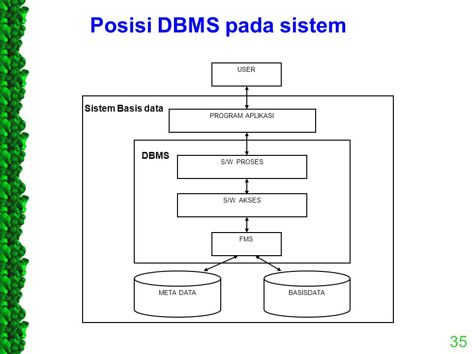 Posisi DBMS pada sistem