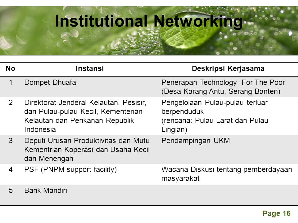 Institutional Networking