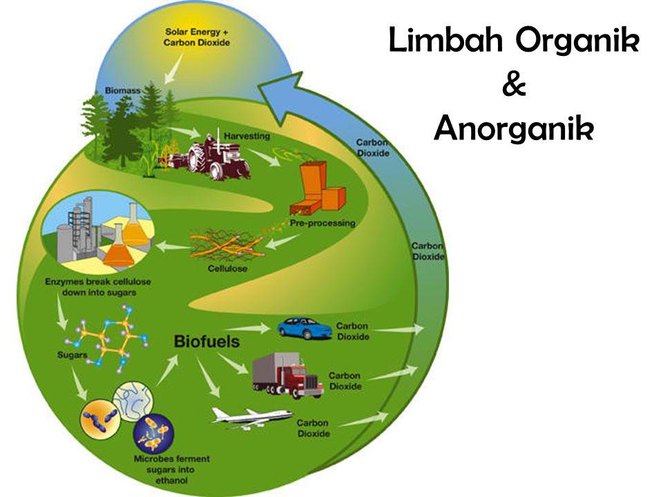 Limbah Organik & Anorganik