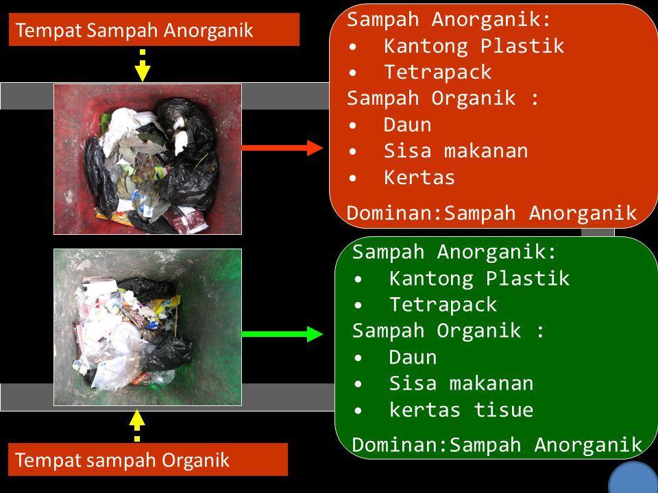 Sampah Anorganik: Kantong Plastik. Tetrapack. Sampah Organik : Daun. Sisa makanan. Kertas. Dominan:Sampah Anorganik.
