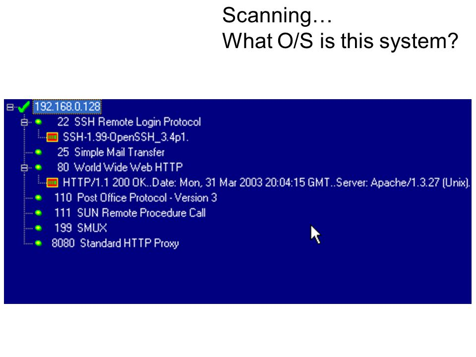 Scanning… What O/S is this system