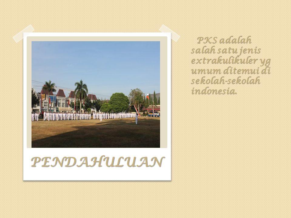 PKS adalah salah satu jenis extrakulikuler yg umum ditemui di sekolah-sekolah indonesia.