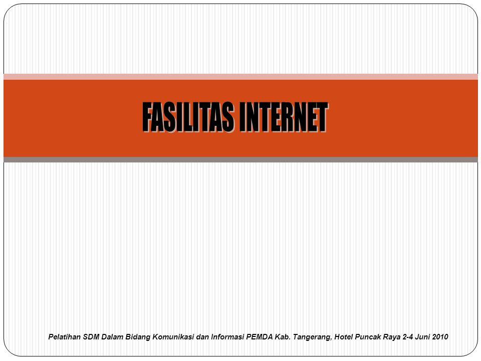 FASILITAS INTERNET Pelatihan SDM Dalam Bidang Komunikasi dan Informasi PEMDA Kab.