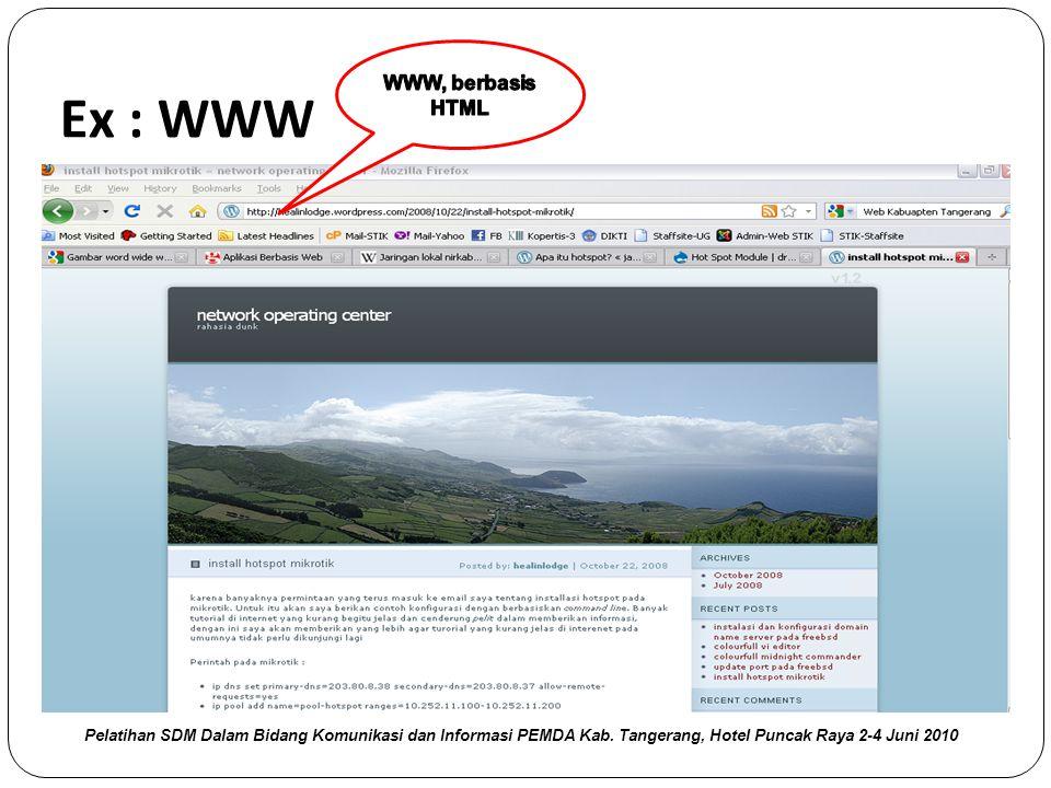 Ex : WWW WWW, berbasis HTML