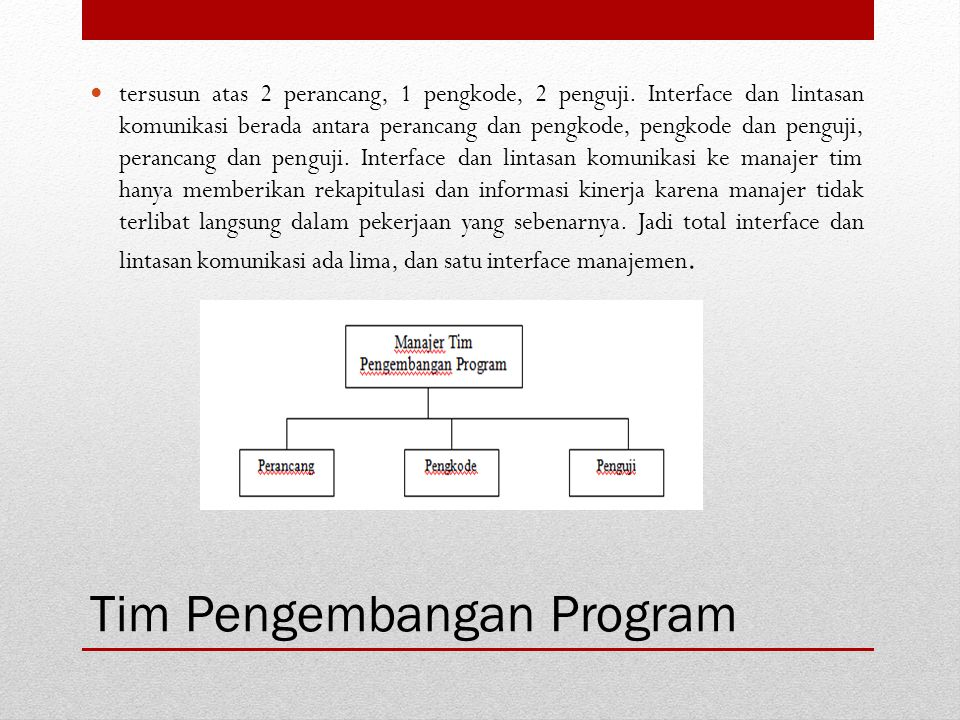 Tim Pengembangan Program