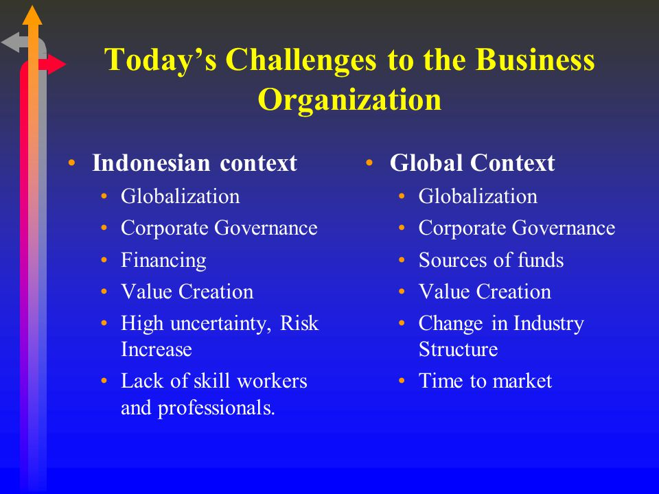 Today's Challenges to the Business Organization