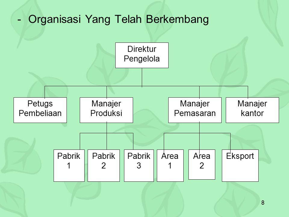 Organisasi Yang Telah Berkembang