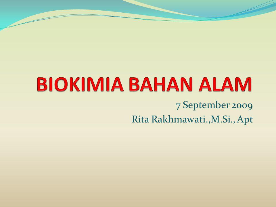 7 September 2009 Rita Rakhmawati.,M.Si., Apt