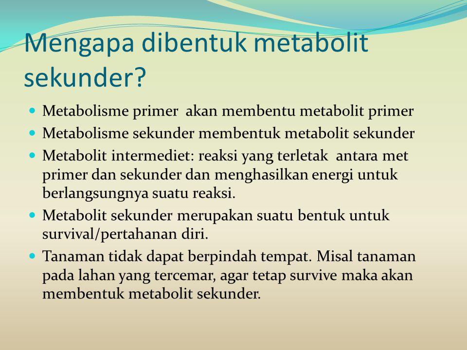 Mengapa dibentuk metabolit sekunder