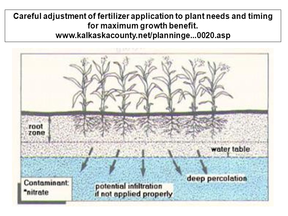 Careful adjustment of fertilizer application to plant needs and timing for maximum growth benefit.