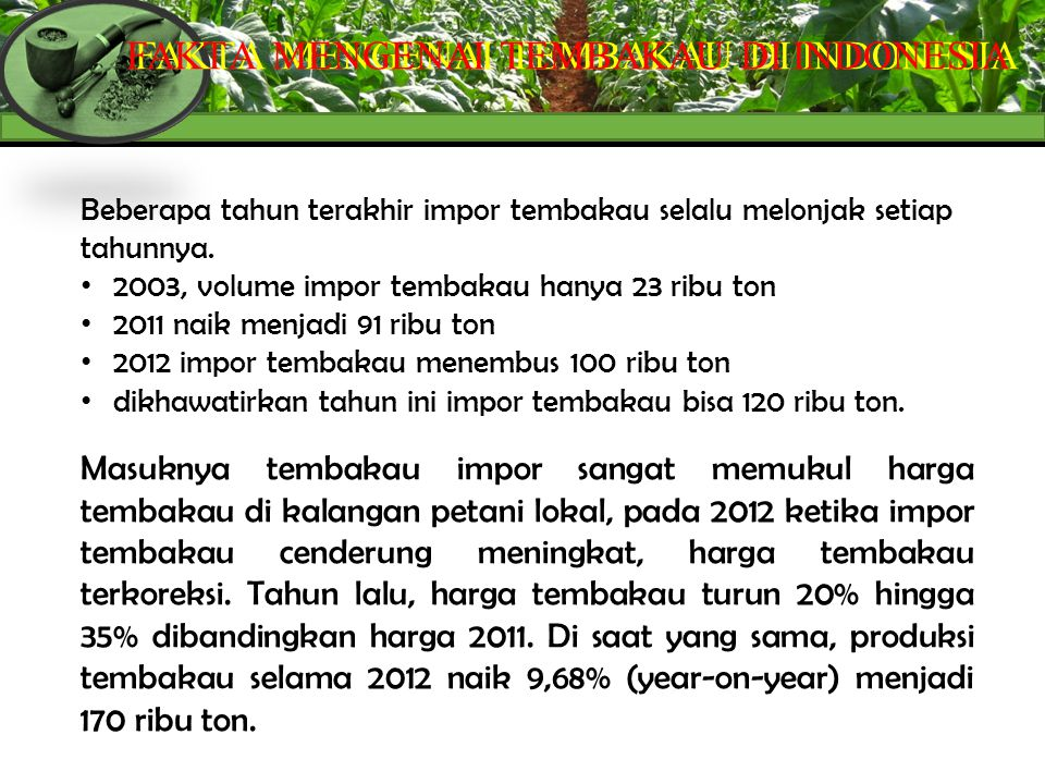 FAKTA MENGENAI TEMBAKAU DI INDONESIA