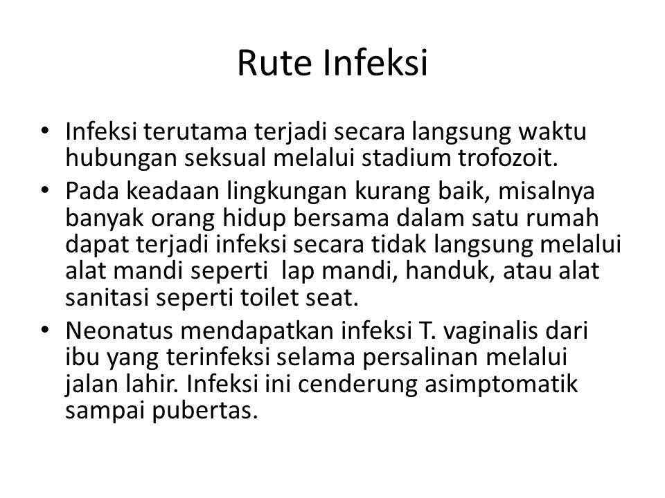 Rute Infeksi Infeksi terutama terjadi secara langsung waktu hubungan seksual melalui stadium trofozoit.