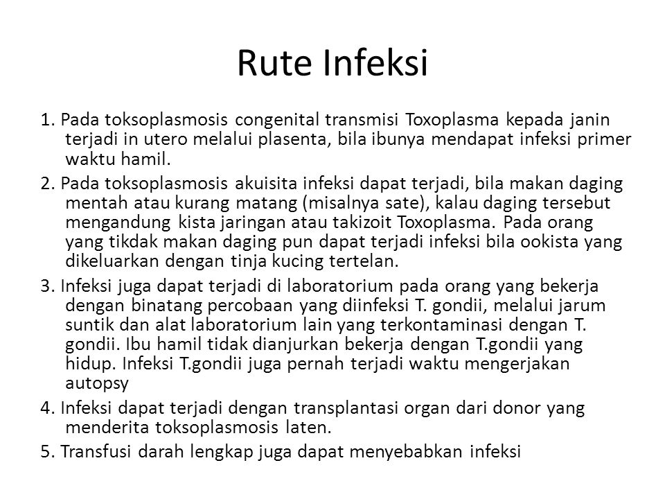 Rute Infeksi