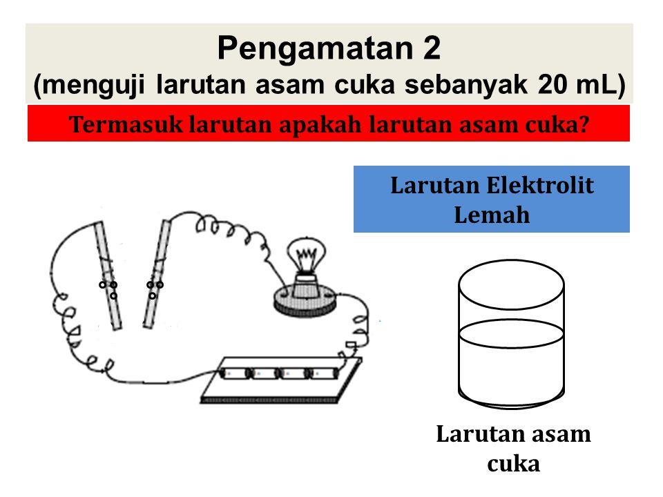Pengamatan 2 (menguji larutan asam cuka sebanyak 20 mL)