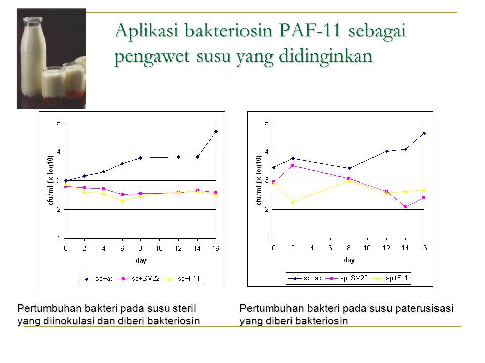 Aplikasi bakteriosin PAF-11 sebagai pengawet susu yang didinginkan