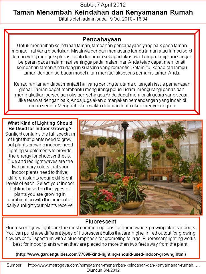 Taman Menambah Keindahan dan Kenyamanan Rumah