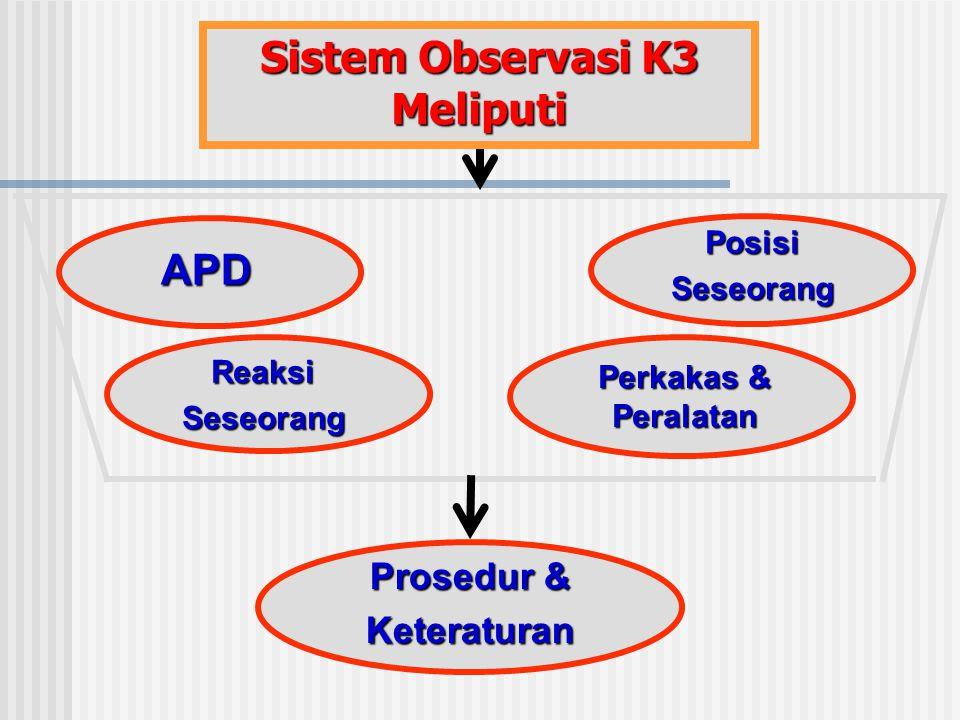 Sistem Observasi K3 Meliputi