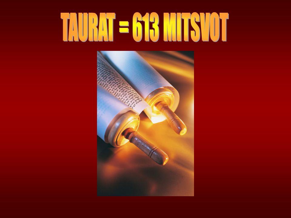 TAURAT = 613 MITSVOT
