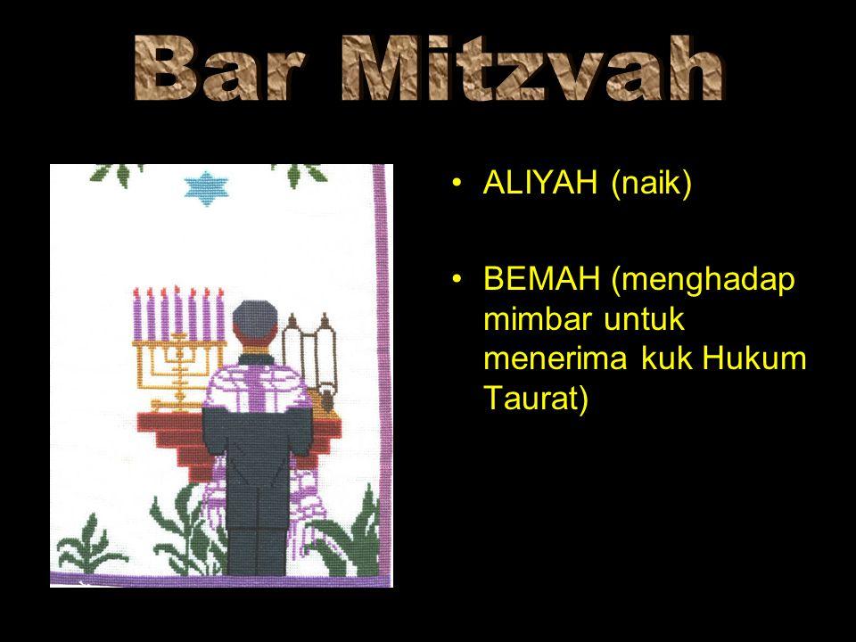 Bar Mitzvah ALIYAH (naik)
