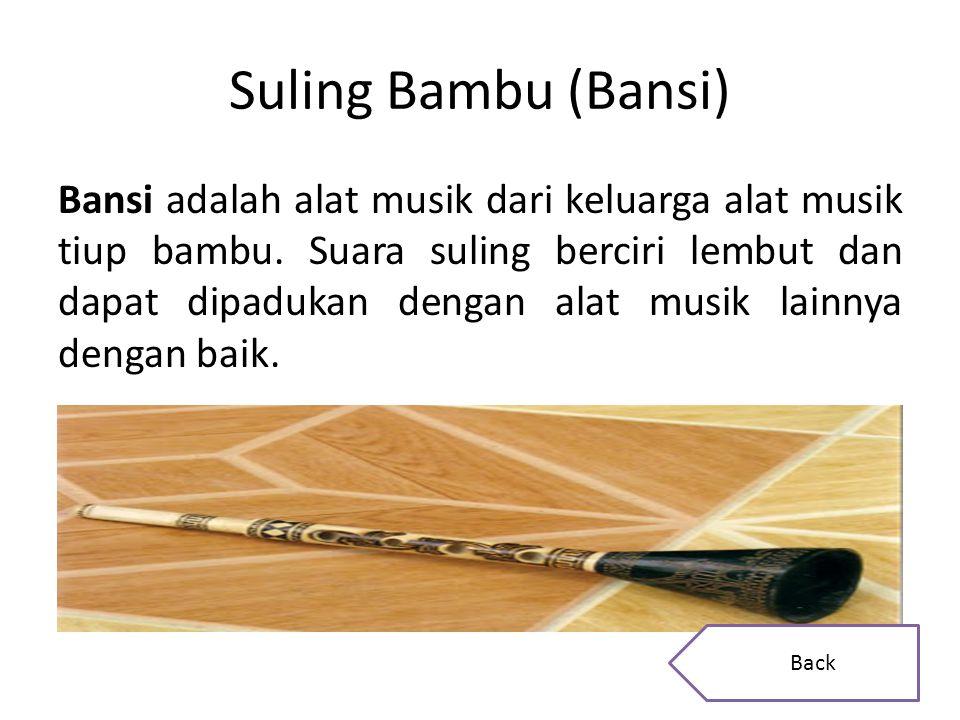 Suling Bambu (Bansi)