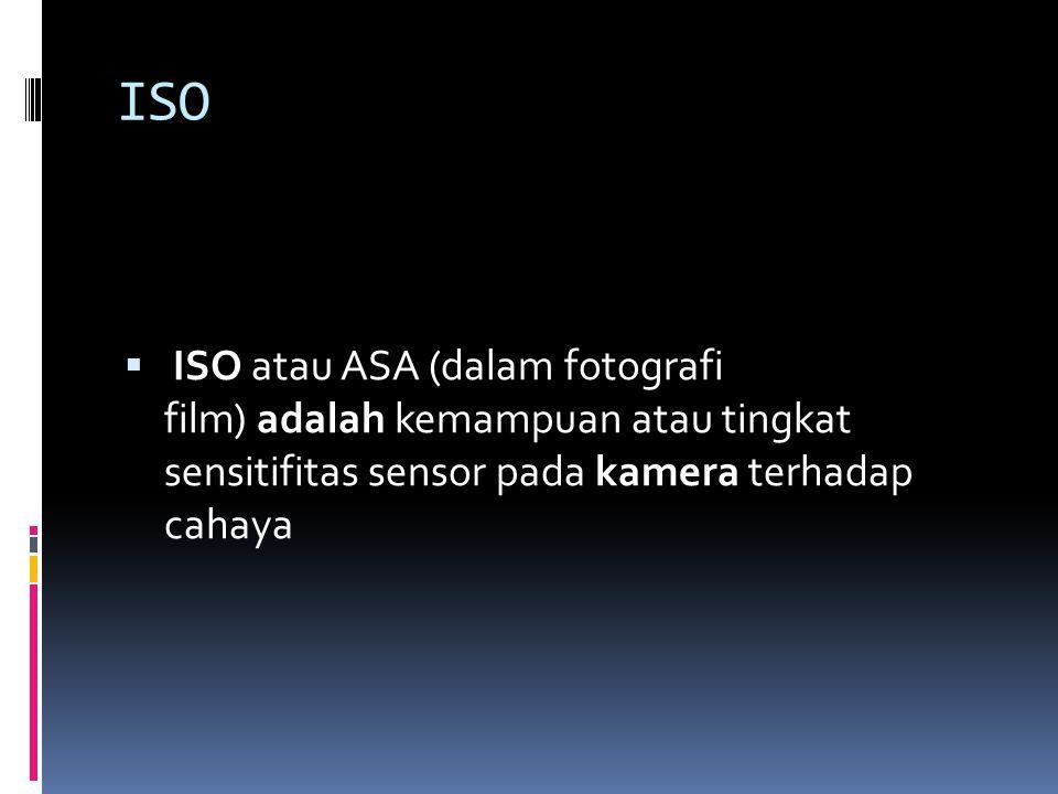 ISO ISO atau ASA (dalam fotografi film) adalah kemampuan atau tingkat sensitifitas sensor pada kamera terhadap cahaya.