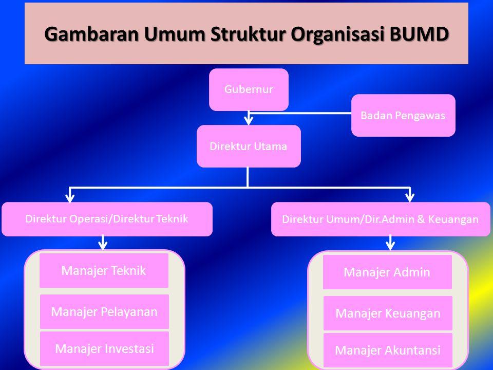Gambaran Umum Struktur Organisasi BUMD