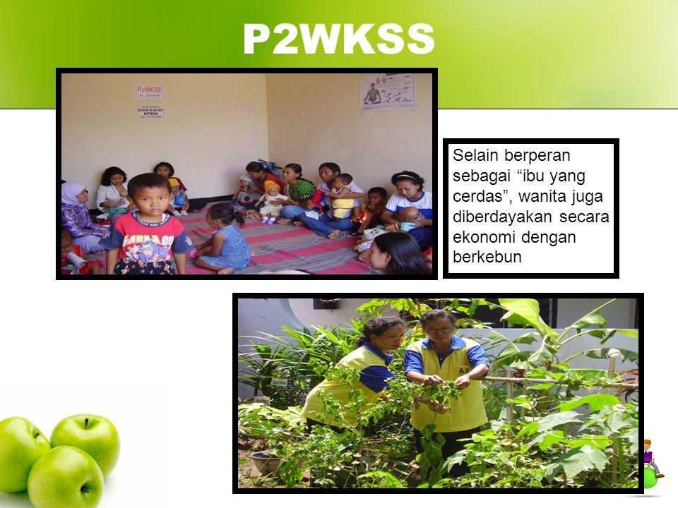 P2WKSS Selain berperan sebagai ibu yang cerdas , wanita juga diberdayakan secara ekonomi dengan berkebun.