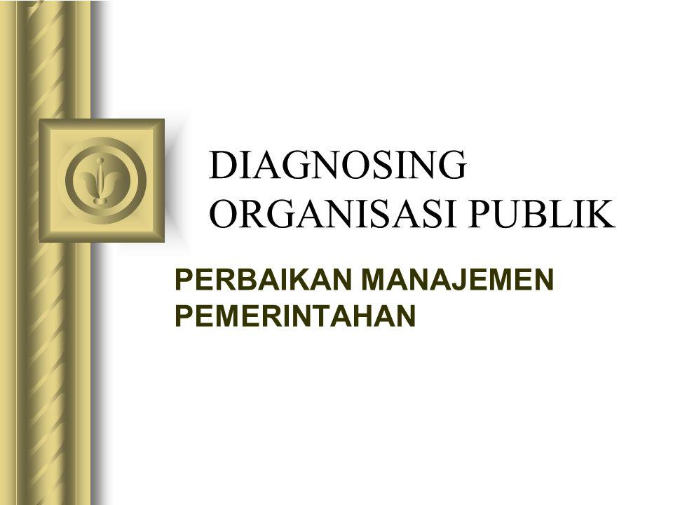 DIAGNOSING ORGANISASI PUBLIK