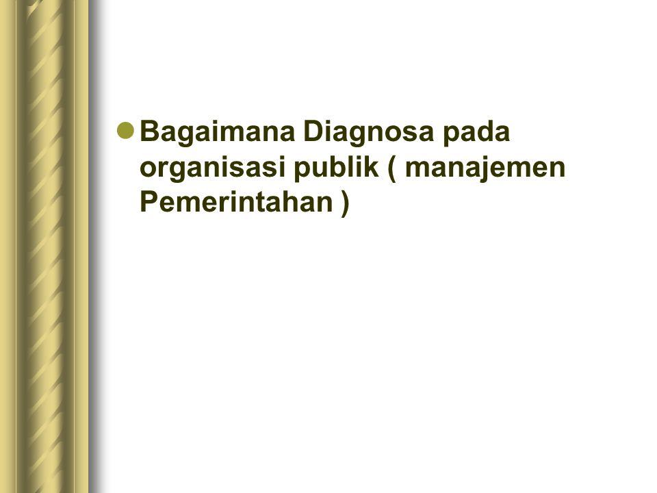 Bagaimana Diagnosa pada organisasi publik ( manajemen Pemerintahan )