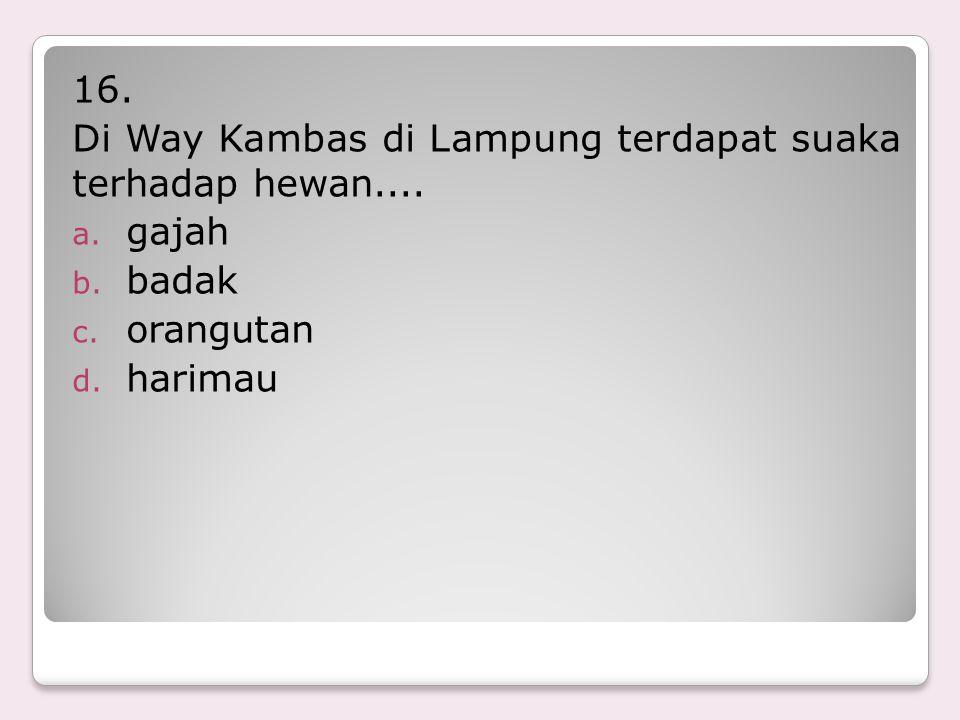 16. Di Way Kambas di Lampung terdapat suaka terhadap hewan.... gajah badak orangutan harimau