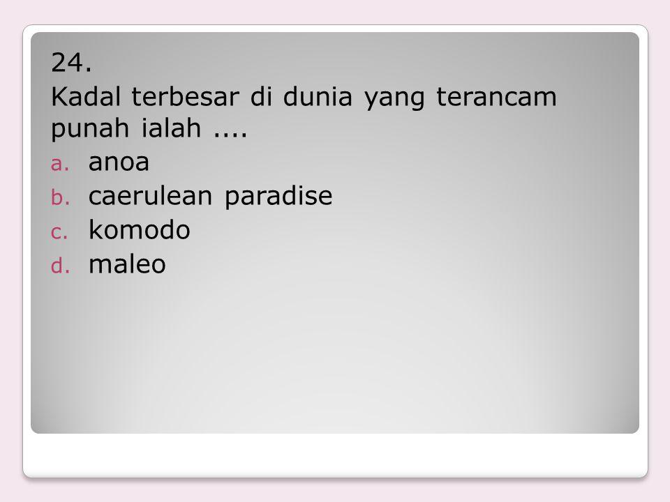 24. Kadal terbesar di dunia yang terancam punah ialah .... anoa caerulean paradise komodo maleo