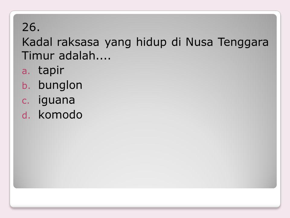 26. Kadal raksasa yang hidup di Nusa Tenggara Timur adalah.... tapir bunglon iguana komodo
