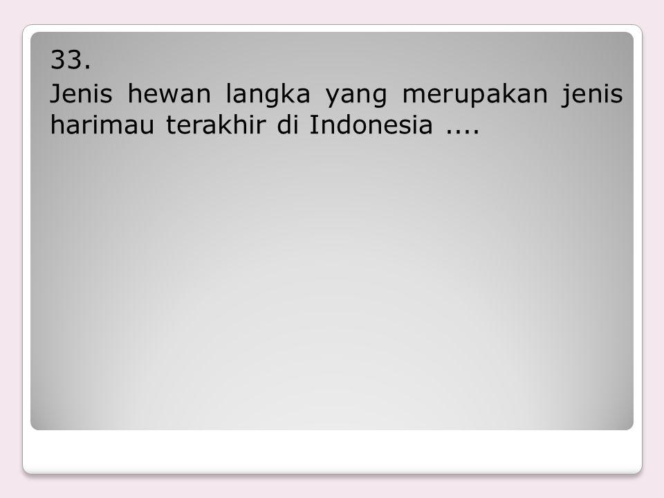 33. Jenis hewan langka yang merupakan jenis harimau terakhir di Indonesia ....