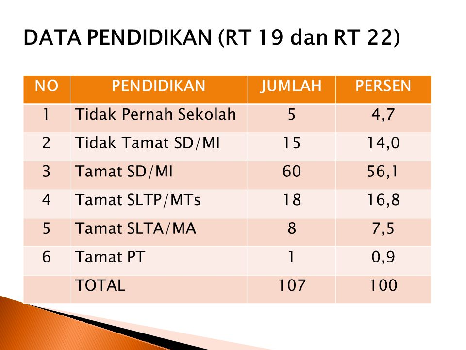 DATA PENDIDIKAN (RT 19 dan RT 22)