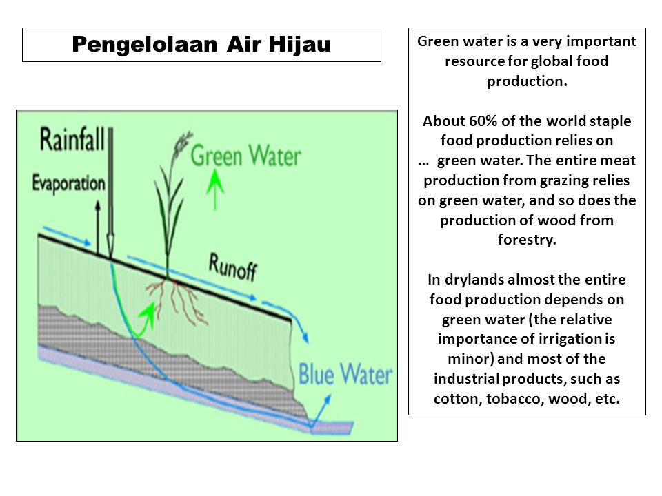 Green water is a very important resource for global food production.