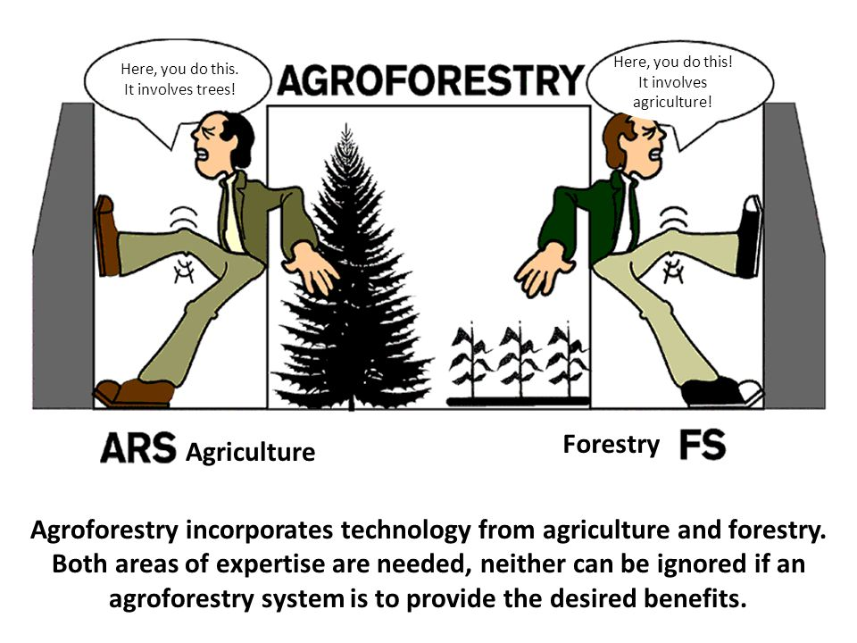 Here, you do this. It involves trees! Here, you do this! It involves. agriculture! Forestry. Agriculture.