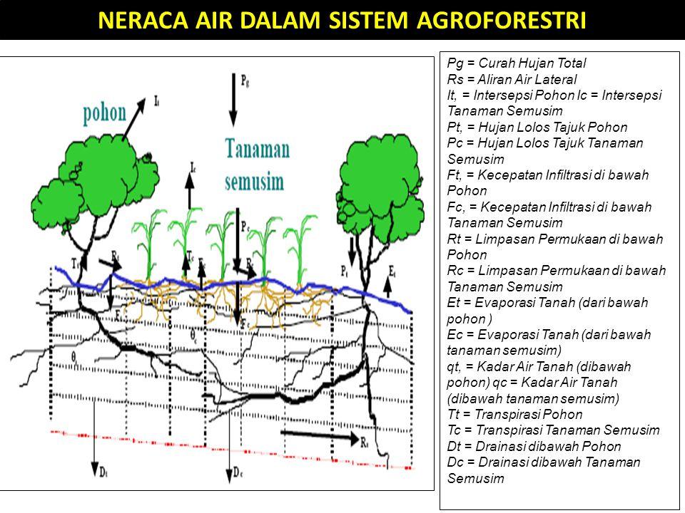 NERACA AIR DALAM SISTEM AGROFORESTRI