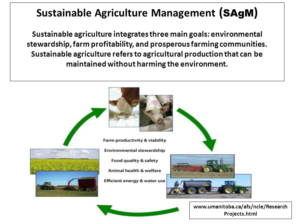 Sustainable Agriculture Management (SAgM)
