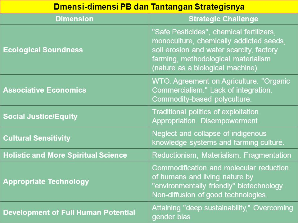 Dmensi-dimensi PB dan Tantangan Strategisnya