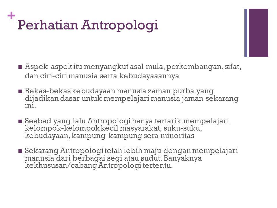 Perhatian Antropologi