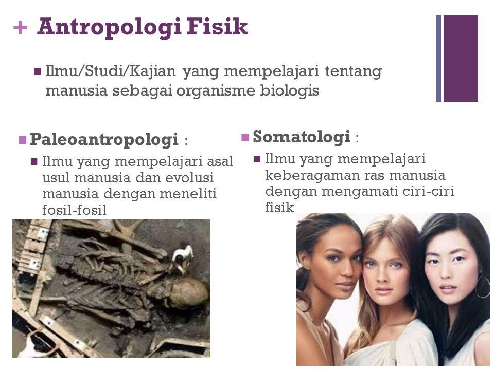 Antropologi Fisik Somatologi : Paleoantropologi :