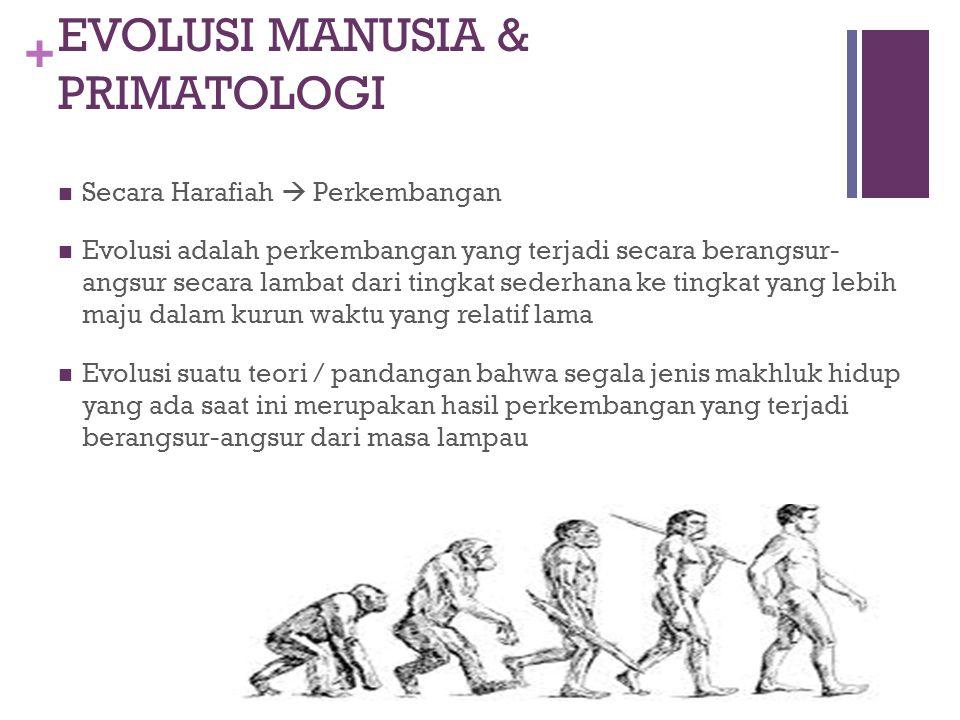 EVOLUSI MANUSIA & PRIMATOLOGI