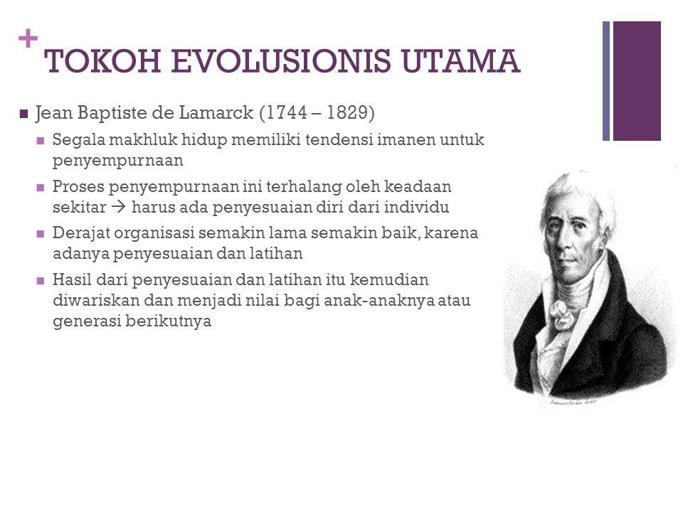TOKOH EVOLUSIONIS UTAMA